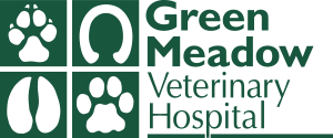 Green Meadow Veterinary Hospital